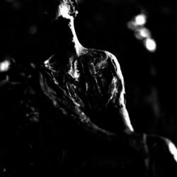 動かざる命~彫刻の森美術館02