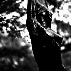 動かざる命~彫刻の森美術館03
