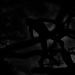 動かざる命~彫刻の森美術館04