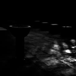 動かざる命~彫刻の森美術館06