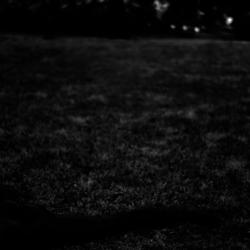 動かざる命~彫刻の森美術館07