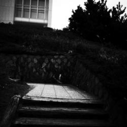 神奈川県立近代美術館 07