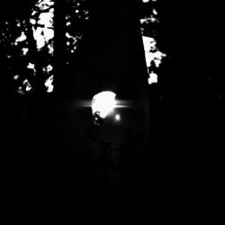 動かざる命~彫刻の森美術館08