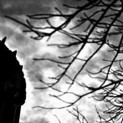 動かざる命~彫刻の森美術館11