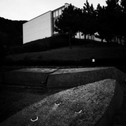 神奈川県立近代美術館 11