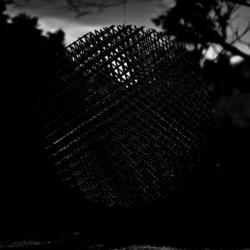 動かざる命~彫刻の森美術館13