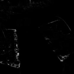 動かざる命~彫刻の森美術館15