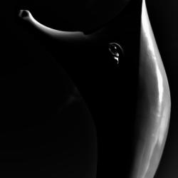 動かざる命~彫刻の森美術館23