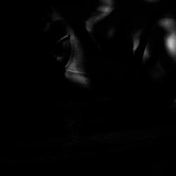 動かざる命~彫刻の森美術館25